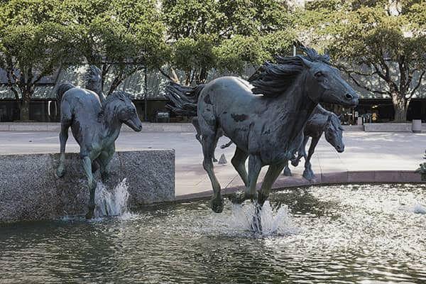 Mustangs - Het geluid van galopperende paardenhoeven