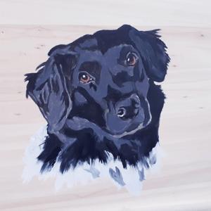 Beschilderde uitvaartkist door Vanessa van Munster - huisdier, hond