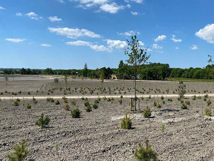 Natuurbegraafplaats Geestmerloo, juni 2020
